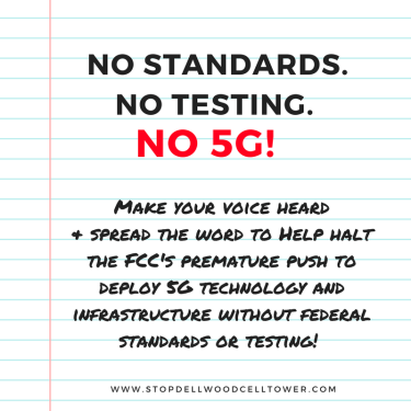 no-standards